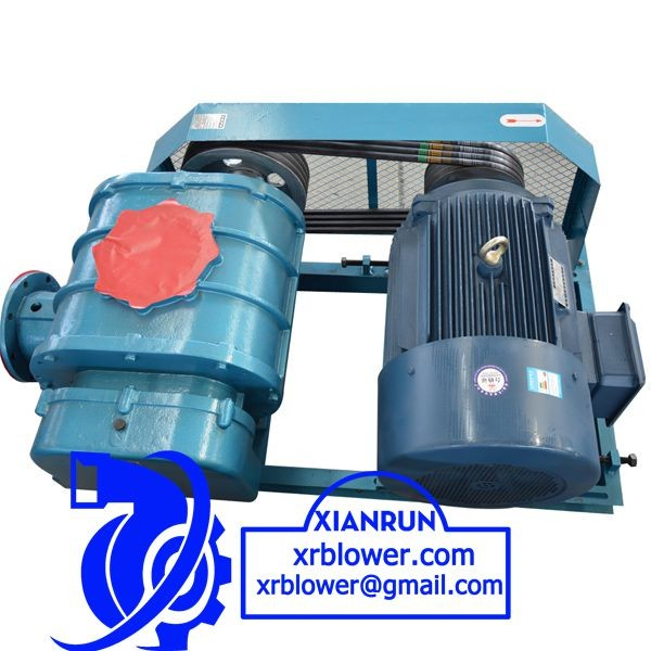 Positive Displacement Roots Blower